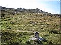 Q3002 : Clogher Head: Toran survey station by Nigel Cox