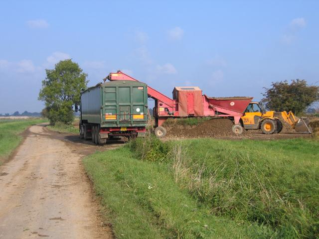 Loading the sugar beet harvest, Gosberton, Lincs
