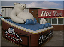 TA0827 : Arctic Spas by Charles Rispin