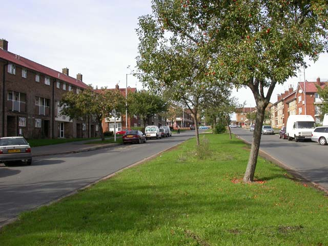 Park Drive, King's Heath