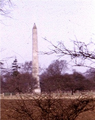 Wellington Monument, Wynyard Park