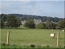 N9510 : Russborough House, Blessington, Co Wicklow. by Hamish Bain