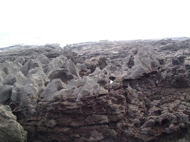Sea-eroded rocks, Oxwich Point
