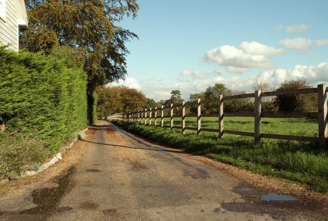 Lane that leads to Hoo Hall, Rivenhall, Essex