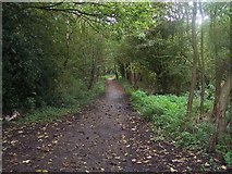SK0305 : Cycle Route 5, Brownhills by Geoff Pick