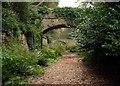 NY8261 : Bridges at Langley by Bill Cresswell