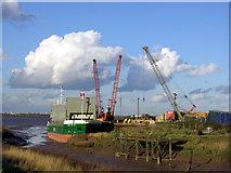 "TA0623 : ""RMS Setlark"" discharging timber at Barrow Haven by David Wright"