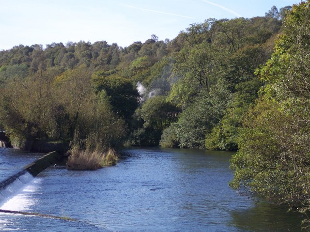 River Levens, Steam Train disappearing through the Trees