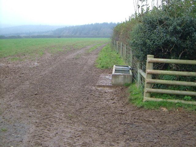 Field near Little Pethill