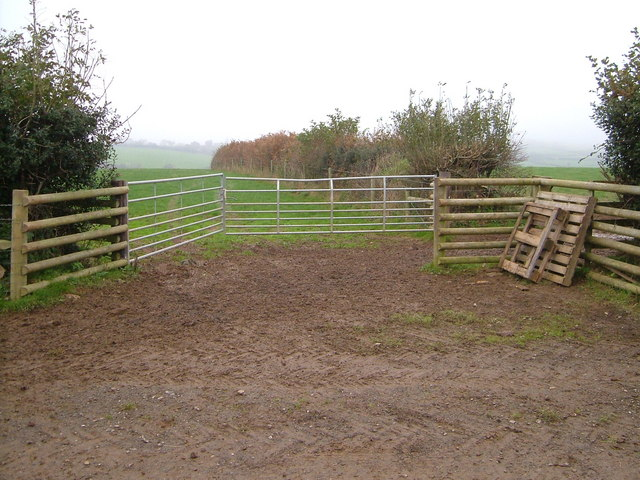 Gates and hedges near Little Pethill