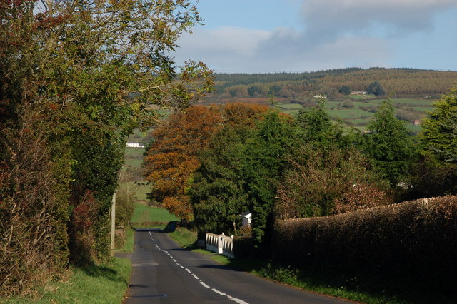 The Lismenary Road, Ballynure