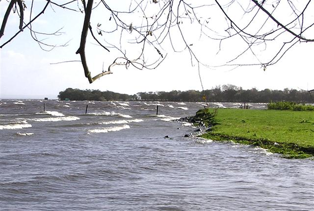Lough Neagh at Kinturk
