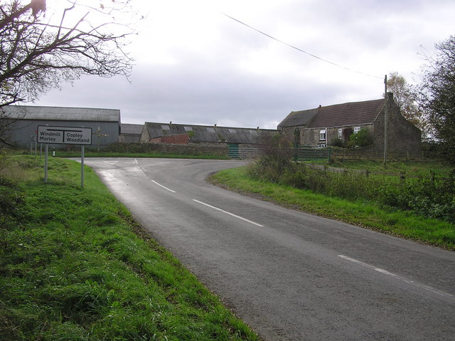 Daniel Lane : Morley Farm