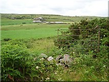 V9138 : Dun Beacain /  Dunbeacon townland by Richard Webb