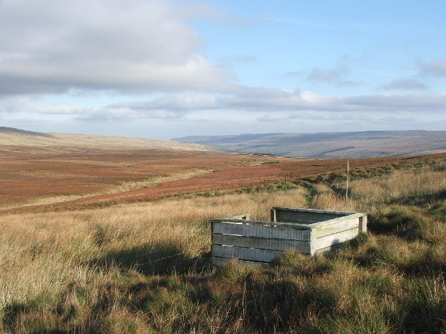 Grouse Butts on North Moor.