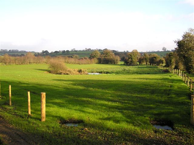 Bloomhill Townland