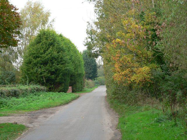 Mill Road, Mattishall