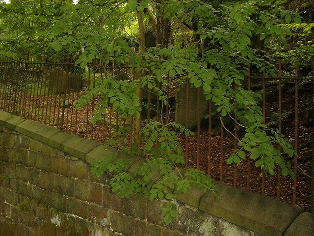 Burial Ground at Mount Olivet Chapel, above Naze Wood