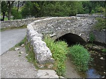 SD9163 : Gordale Bridge by John S Turner