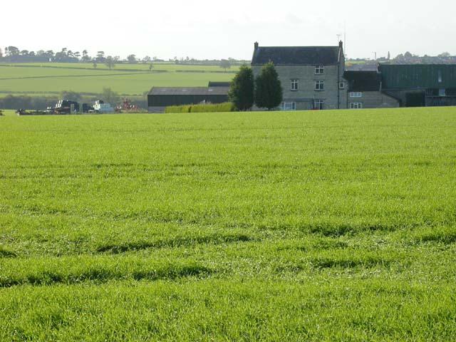 Knuston High Farm