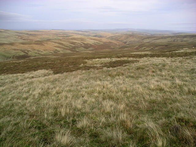 Looking downhill to Blackhope Water