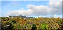 NN9357 : Autumn in Pitlochry. by Martyn Gorman