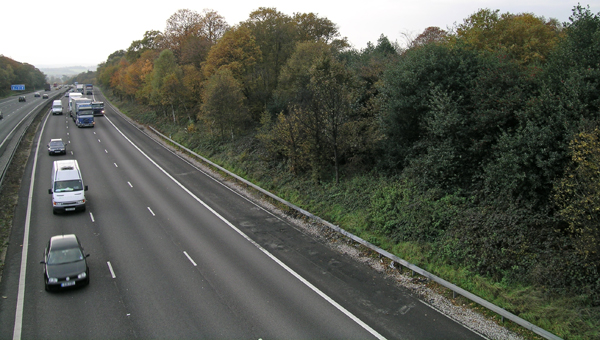 M11 from Essex Way with Gernon Bushes Nature reserve (to my right)