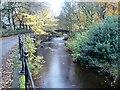 SE0411 : River Colne, Clough Lea, Marsden by Tim Marchant