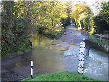 TL4731 : River Stort in Clavering by Nigel Cox