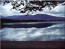 NH9718 : Craiggowrie from shore of Loch Garten by Dumgoyach
