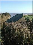 TA3624 : The Runnel, Holmpton by Paul Glazzard