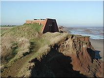 TA3624 : Holmpton Cliffs by Paul Glazzard