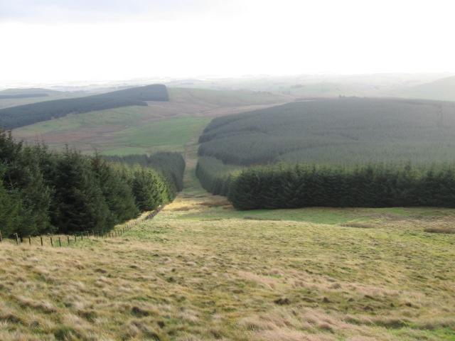 Innerdouny hillside firebreak towards Warroch Hill