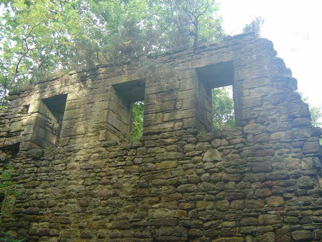 Ruins of Langley Hall, Durham