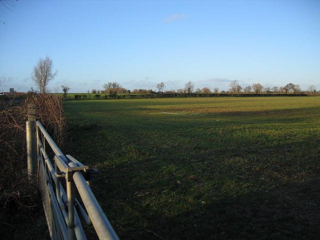 Field near Driffield
