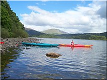 NY2521 : On Derwent water by C Palmer