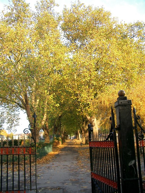 Western gate to Plashet Park with plane trees