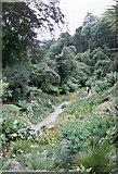 SW7627 : Trebah Gardens by mike hancock