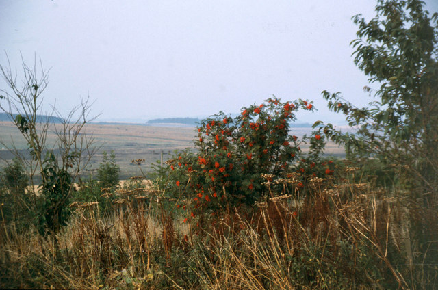 Autumn Colours at Greenlaw