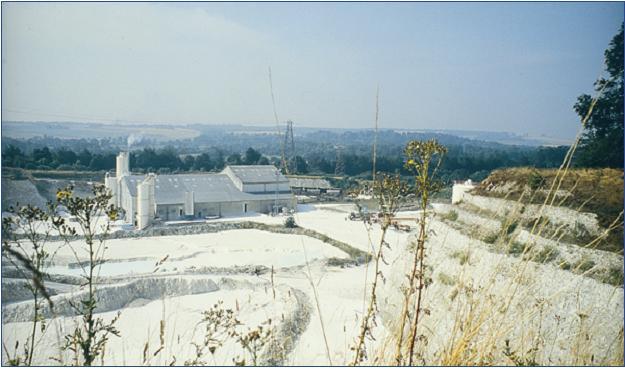 Quidhampton Chalk Quarry