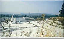 SU1131 : Quidhampton Chalk Quarry by mike hancock