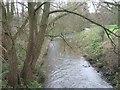 SO8591 : Smestow Brook by John M
