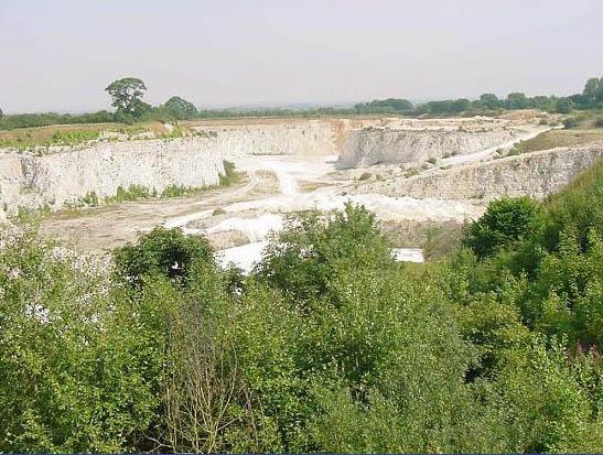 Queensgate chalk quarry