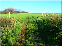 TQ4210 : Footpath to Ringmer by Simon Carey