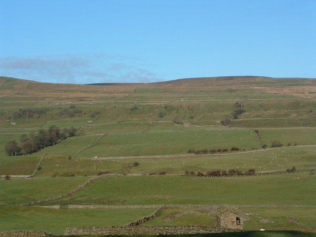 Cote Pasture West, Low Abbotside, Wensleydale