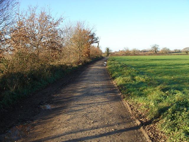 Back Lane 1.2 Km SE Northall Green EAST DEREHAM Norfolk