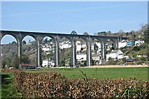 SX4368 : Calstock and the Viaduct by Tony Atkin