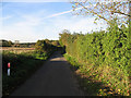 TF8907 : The Lane To Holme Hale by Roger Gilbertson