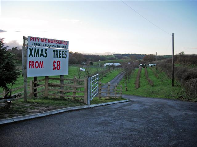 Entrance to Pity Me Nurseries just before Christmas