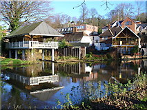SU9948 : Boathouses on the Wey by Colin Smith